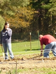 Shoveling the rows!